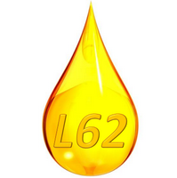 L62 روسیه